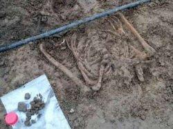 Нидерландские археологи нашли останки древних людей