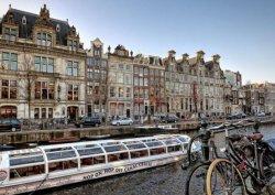 Любопытные факты политической жизни Нидерландов