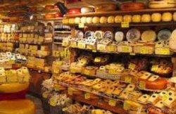Нидерланды – королевство сыра