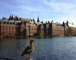 В Гааге пройдет судебное заседание по делу «Нафтогаз Украины»
