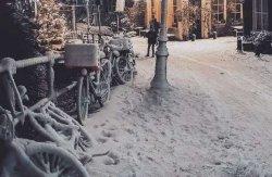 Яркие снимки заснеженного Амстердама
