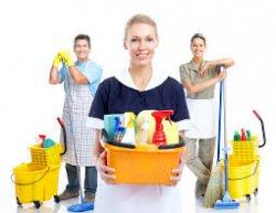 Как правильно выбрать клининговую компанию для уборки квартиры