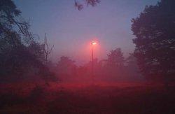 Смена освещения во имя экологии
