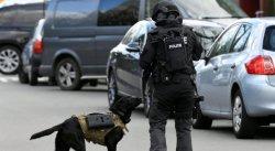 В Зейсте обнаружили взрывчатое устройство