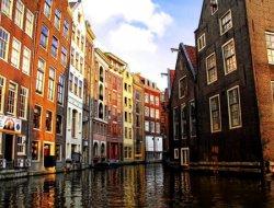 Нидерланды. Ежегодная выставка